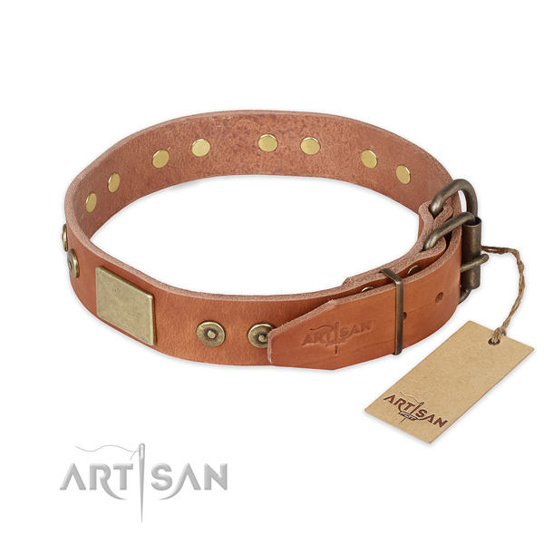 Daily use natural genuine leather collar with embellishments for your dog