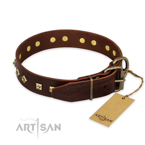 Daily use genuine leather collar with embellishments for your pet