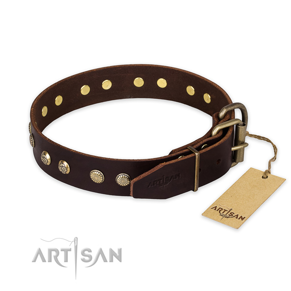 Everyday walking full grain genuine leather collar with adornments for your four-legged friend