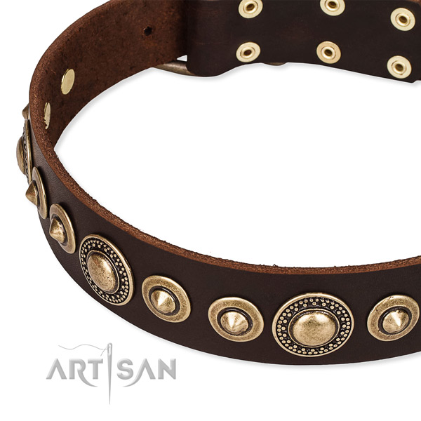 Easy to put on/off leather dog collar with extra sturdy brass plated buckle and D-ring