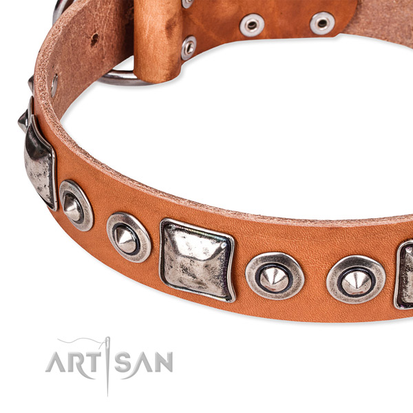 Quick to fasten leather dog collar with almost unbreakable durable buckle