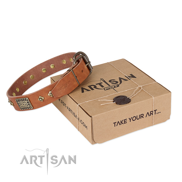 Fashionable full grain genuine leather dog collar for walking in style