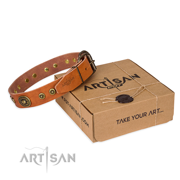 Perfect fit full grain natural leather dog collar for daily use