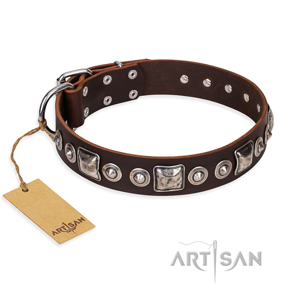 Indestructible leather dog collar with riveted elements