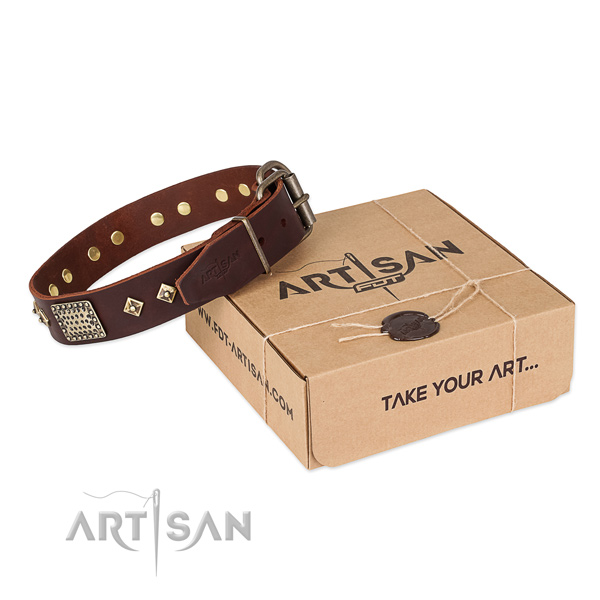Trendy full grain leather dog collar for walking