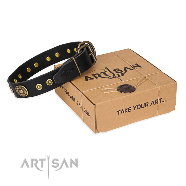 Finest quality full grain leather dog collar for daily walking