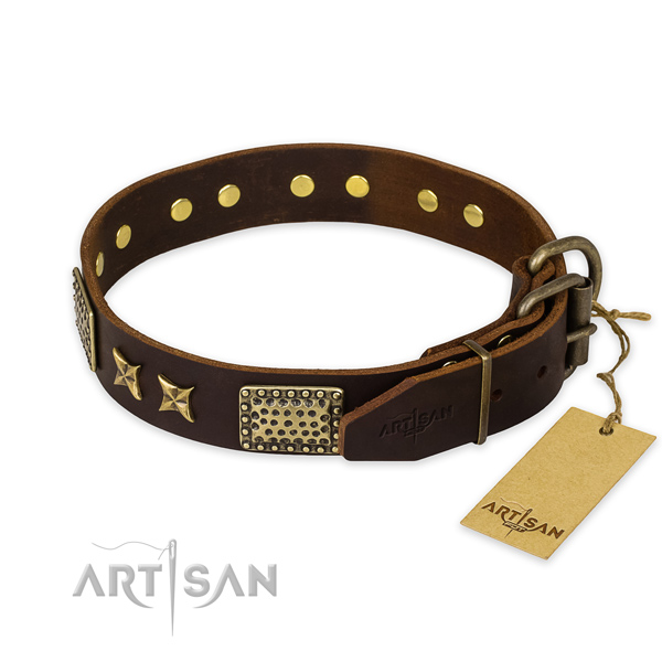 Daily use leather collar with embellishments for your dog
