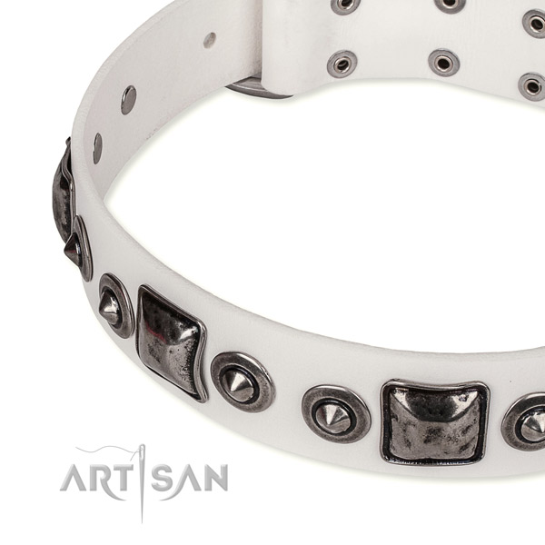 Quick to fasten leather dog collar with resistant to tear and wear non-rusting set of hardware