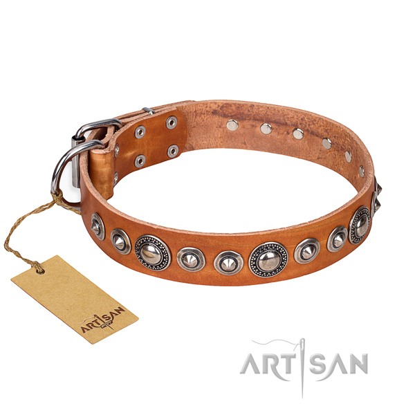 Dependable leather dog collar with rust-resistant elements