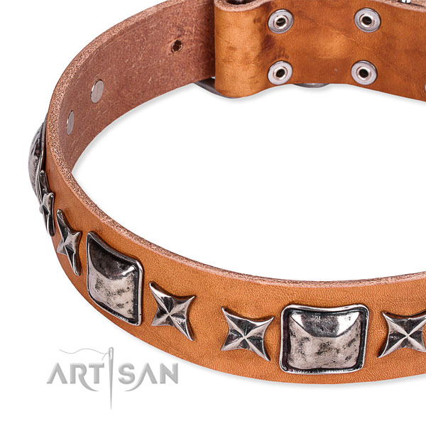 Easy to use leather dog collar with extra strong brass plated buckle