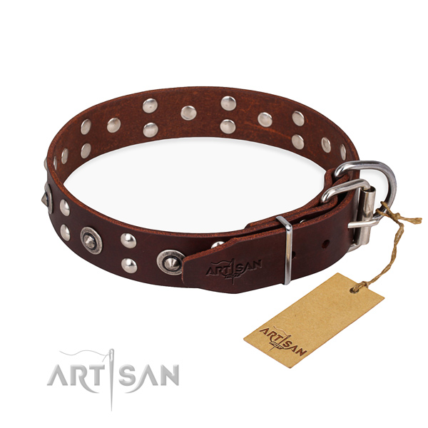 Everyday leather collar for your favourite dog