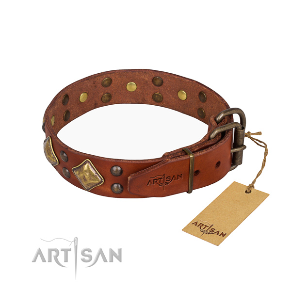 Awesome leather collar for your elegant dog