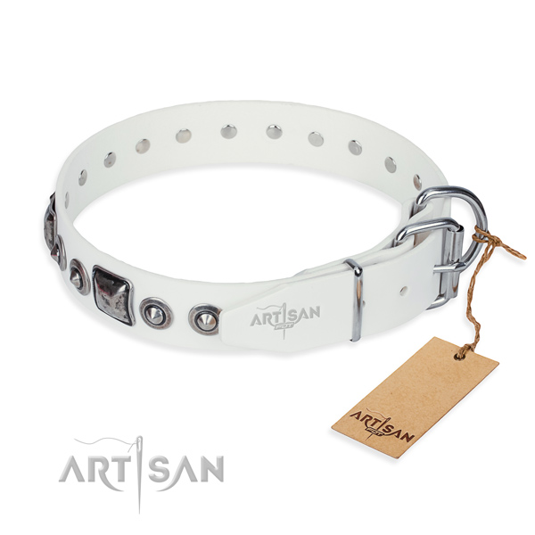 Functional leather collar for your darling dog