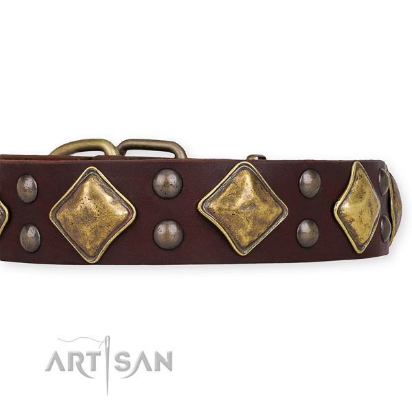 Adjustable leather dog collar with extra sturdy rust-proof buckle