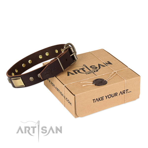 Stylish design genuine leather dog collar for walking