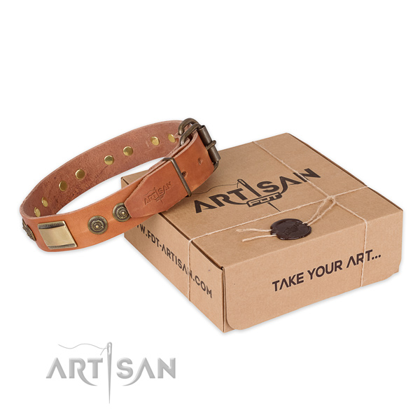 Designer natural genuine leather dog collar for everyday  use