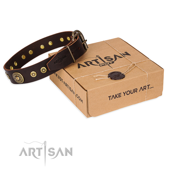 Awesome genuine leather dog collar for walking