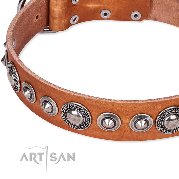 Adjustable leather dog collar with extra sturdy non-rusting buckle