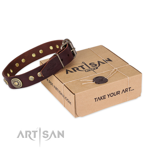 Impressive natural genuine leather dog collar for walking