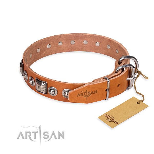 Durable leather collar for your stunning dog