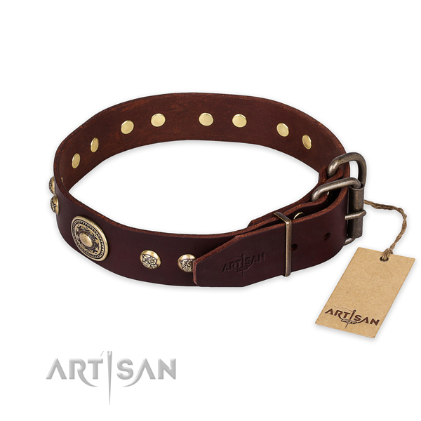 Awesome genuine leather dog collar for stylish walking
