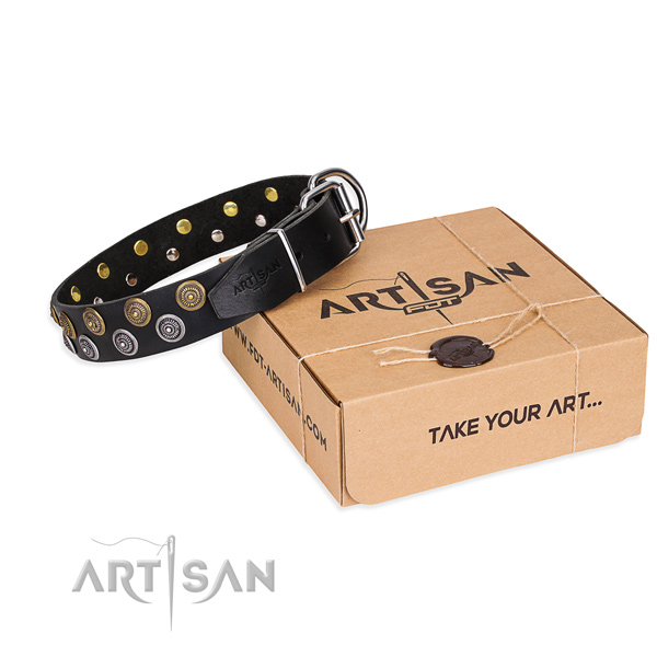 Casual style leather dog collar with amazing studs