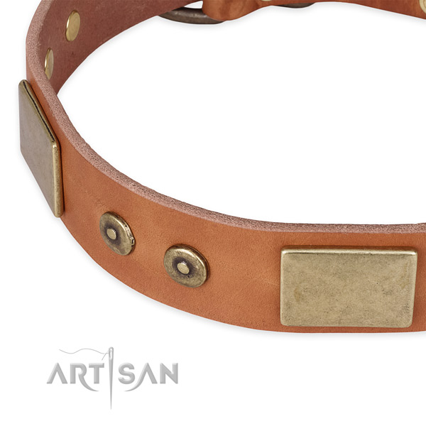 Daily walking full grain natural leather collar with rust-proof buckle and D-ring