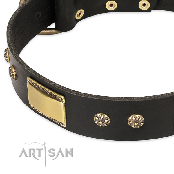 Everyday walking genuine leather collar with corrosion resistant buckle and D-ring