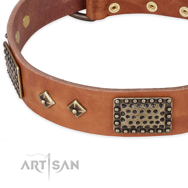 Everyday use full grain natural leather collar with corrosion proof buckle and D-ring