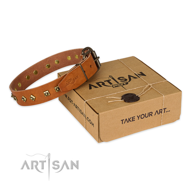 Perfect fit full grain natural leather dog collar for everyday walking