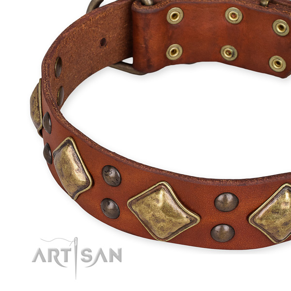 Easy to put on/off leather dog collar with almost unbreakable durable fittings