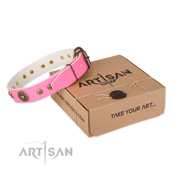 Stylish full grain leather dog collar for stylish walking