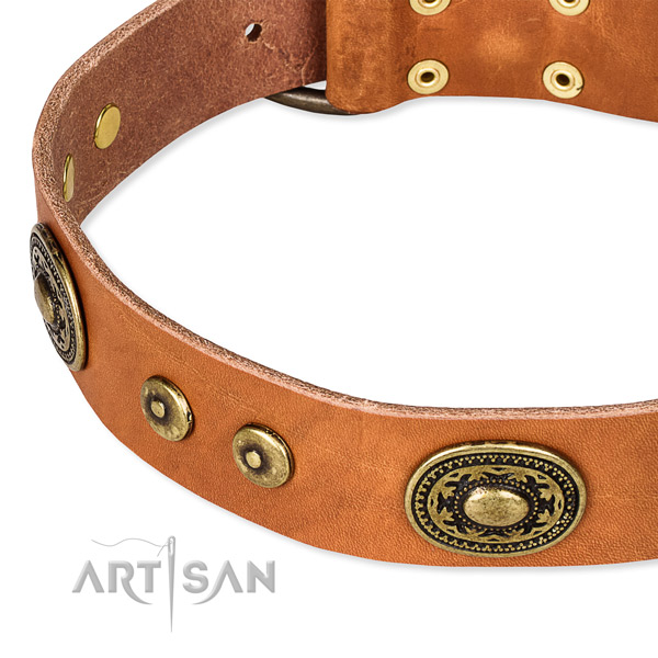 Easy to put on/off leather dog collar with extra strong durable set of hardware