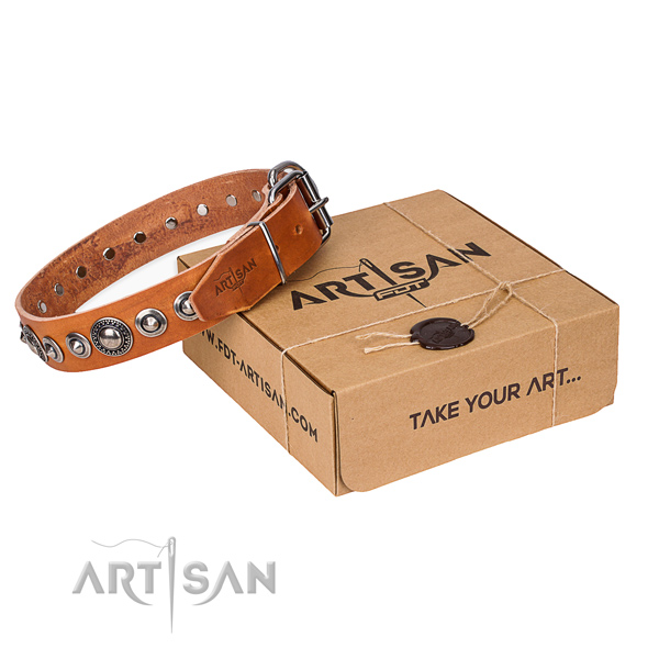 Perfect fit full grain leather dog collar for daily walking