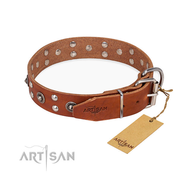 Everyday walking full grain natural leather collar with studs for your dog