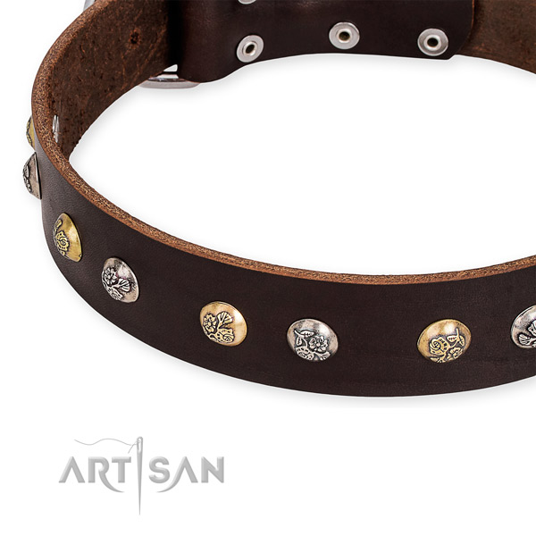 Easy to use leather dog collar with extra strong durable buckle and D-ring