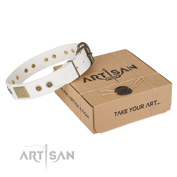 Fine quality genuine leather dog collar for walking in style