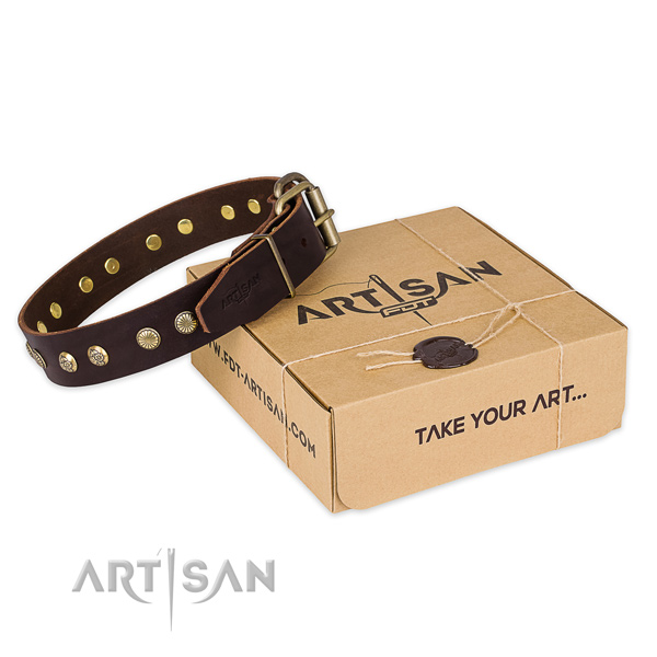High quality full grain natural leather dog collar for walking in style