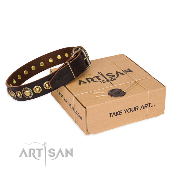 Finest quality leather dog collar for walking in style