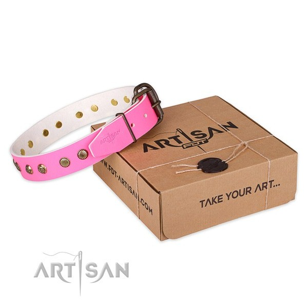 Perfect fit full grain leather dog collar for stylish walking