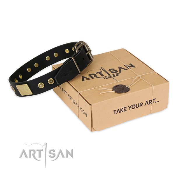 Fashionable natural genuine leather dog collar for  everyday use