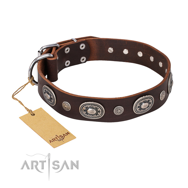Trendy design decorations on leather dog collar
