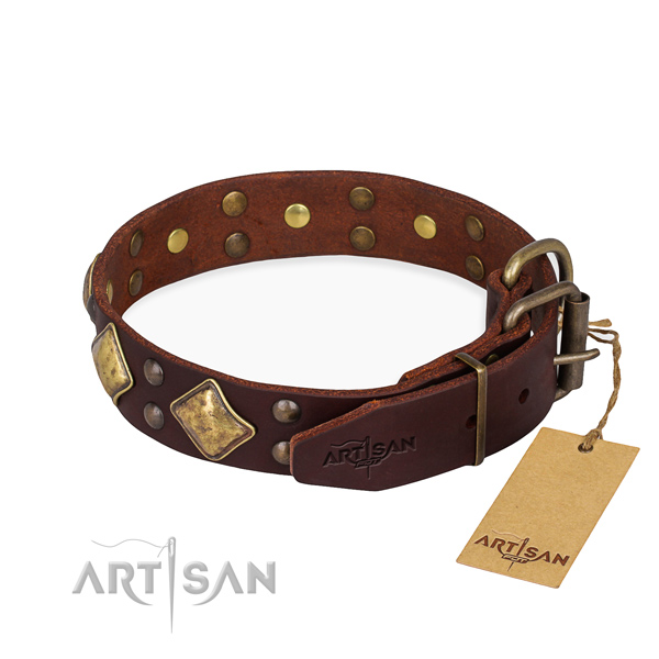 Durable leather collar for your elegant pet
