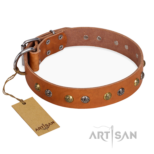 Wear-proof leather collar for your favourite dog