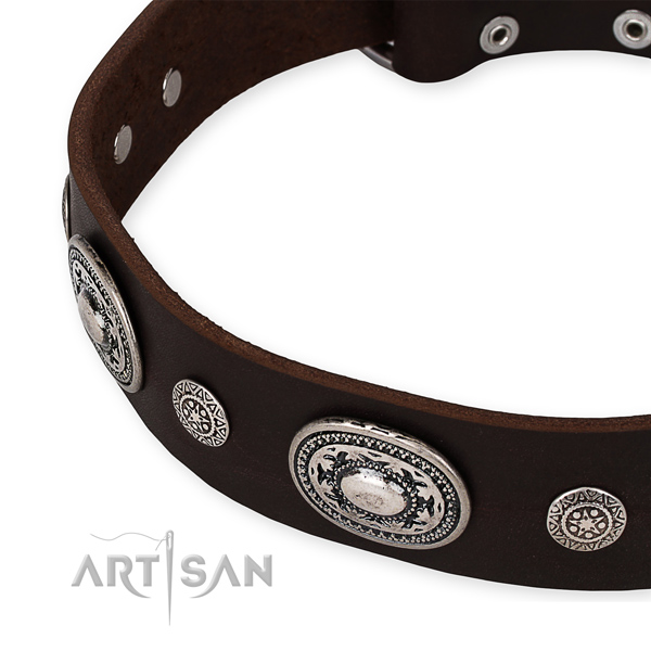 Quick to fasten leather dog collar with resistant non-rusting set of hardware
