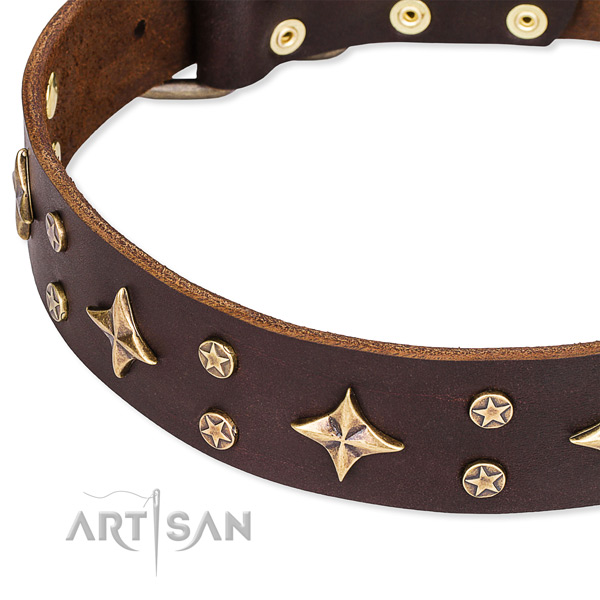 Easy to adjust leather dog collar with resistant to tear and wear brass plated set of hardware