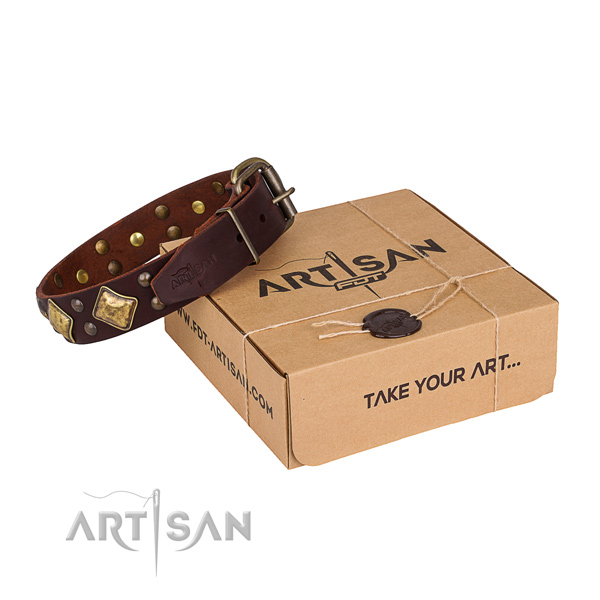 Stylish full grain leather dog collar for walking in style