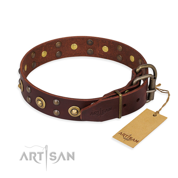 Stylish walking full grain leather collar with adornments for your four-legged friend