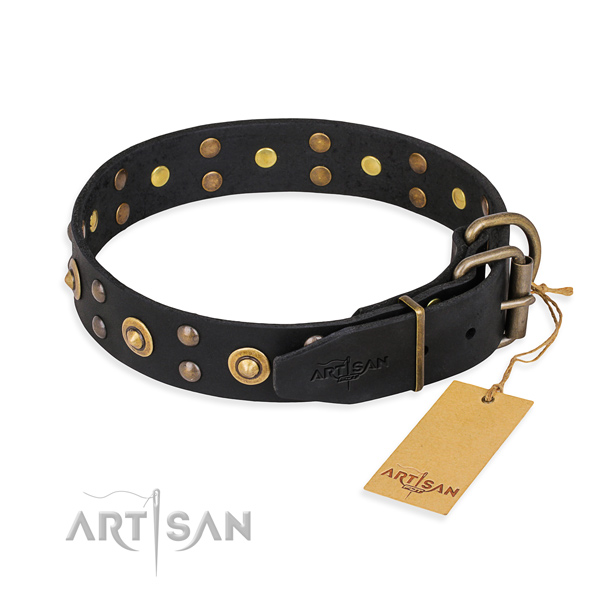Daily use leather collar with adornments for your four-legged friend