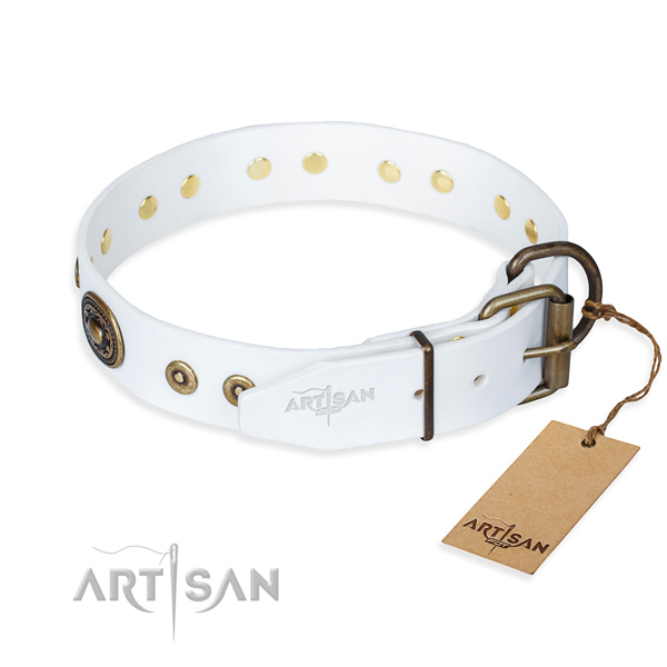 Versatile leather collar for your elegant four-legged friend